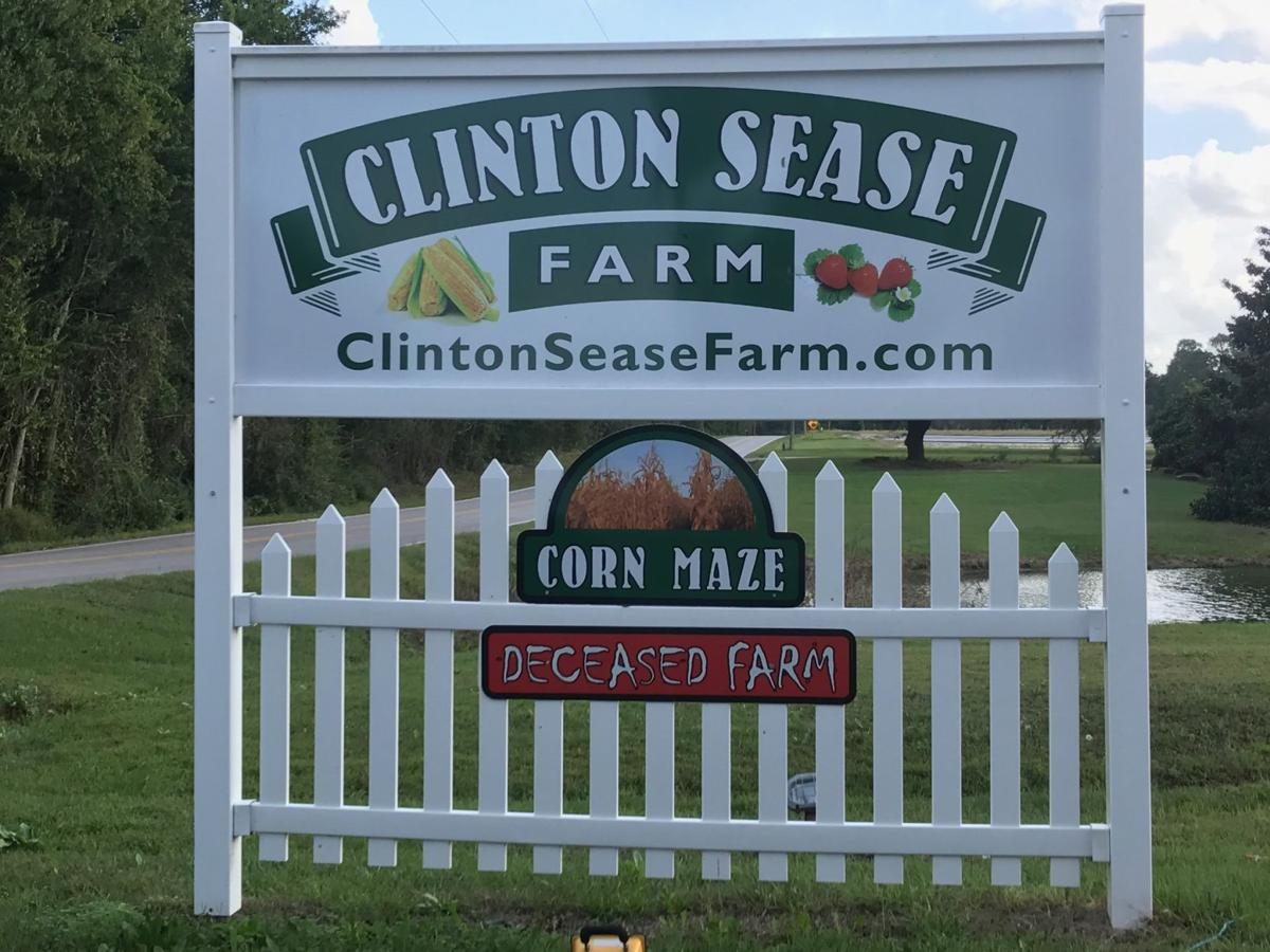 Sease Farm 4