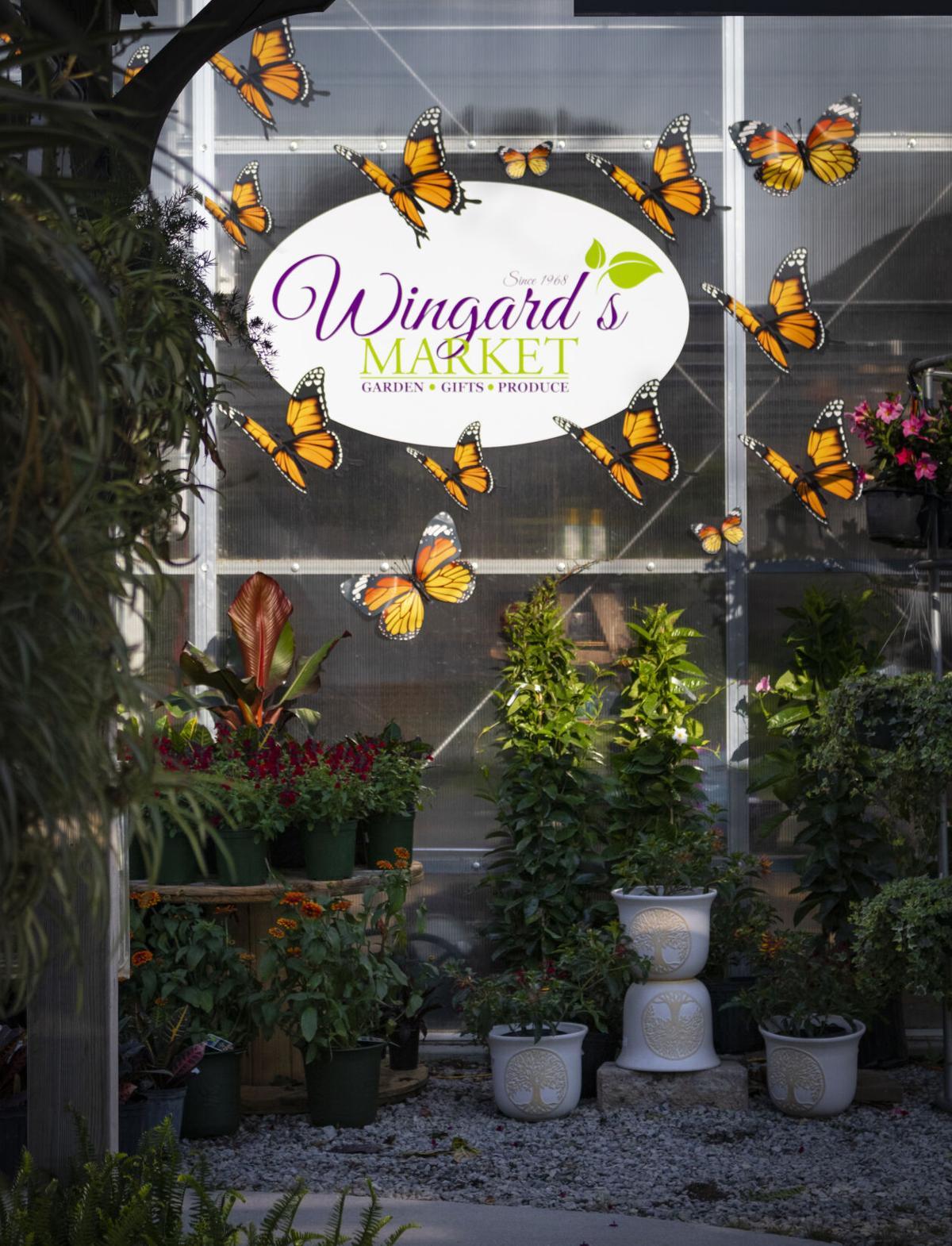 Wingards1Homes.jpg