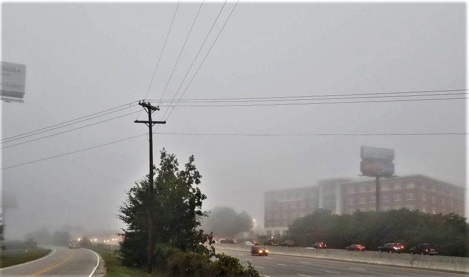 1 fog 2.jpg
