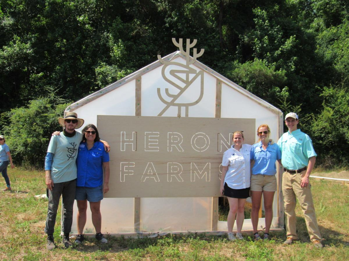 Heron-Farms-Sam-Norton-1536x1152.jpg