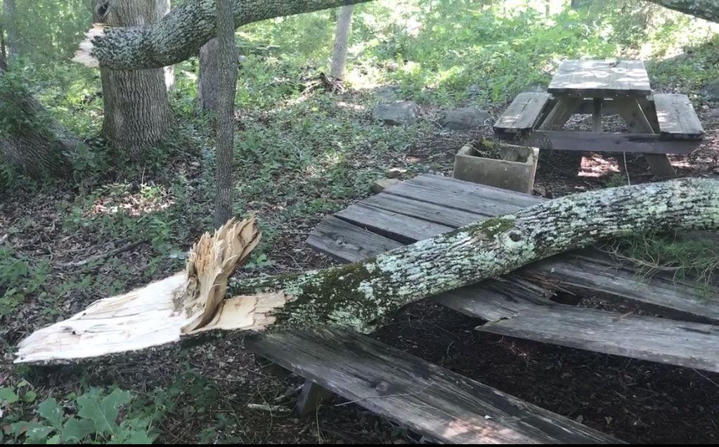 Damaged picnic table.jpg