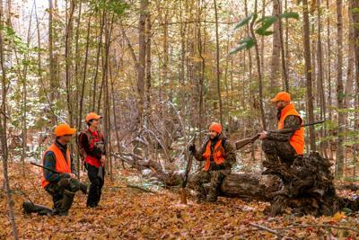 Hunters in orange