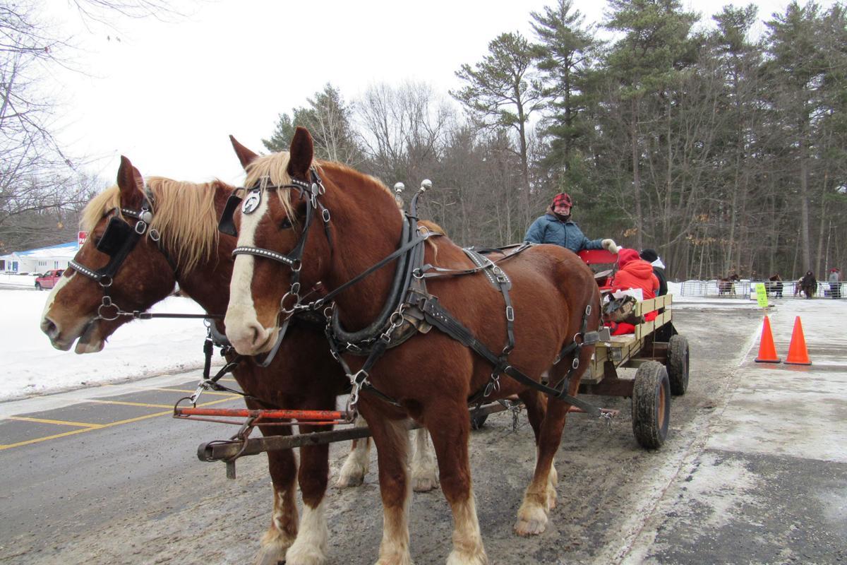 horse-p&r.jpg