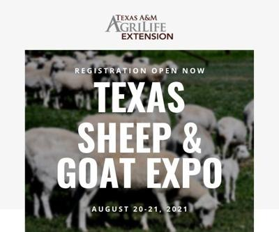 Sheep & Goat Expo