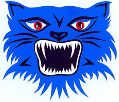 Bluecat Logo - Old