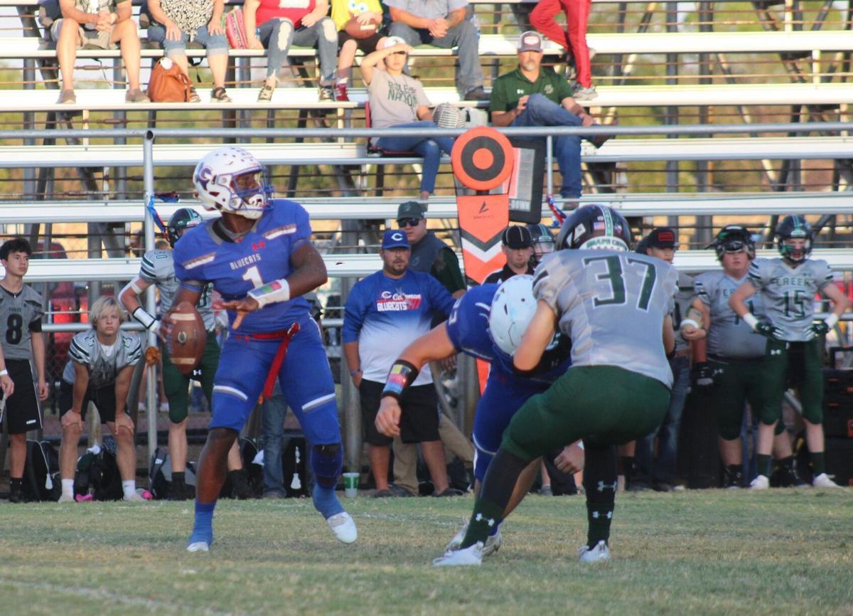 Jadin Jackson TD throw