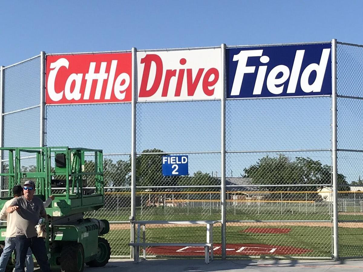 Cattle Drive Field
