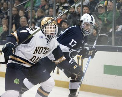 Big Ten Men's Ice Hockey Tournament Championship Game vs. Notre Dame, Barratt (17)