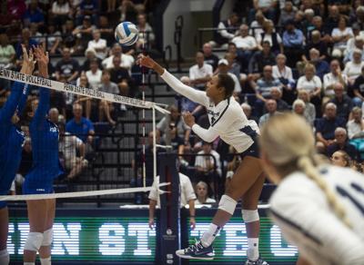 Women's Volleyball vs. Hofstra, Gray (16)