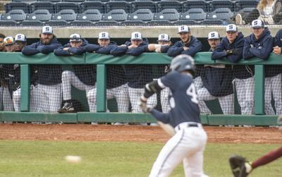Baseball v. Minnesota, Dugout