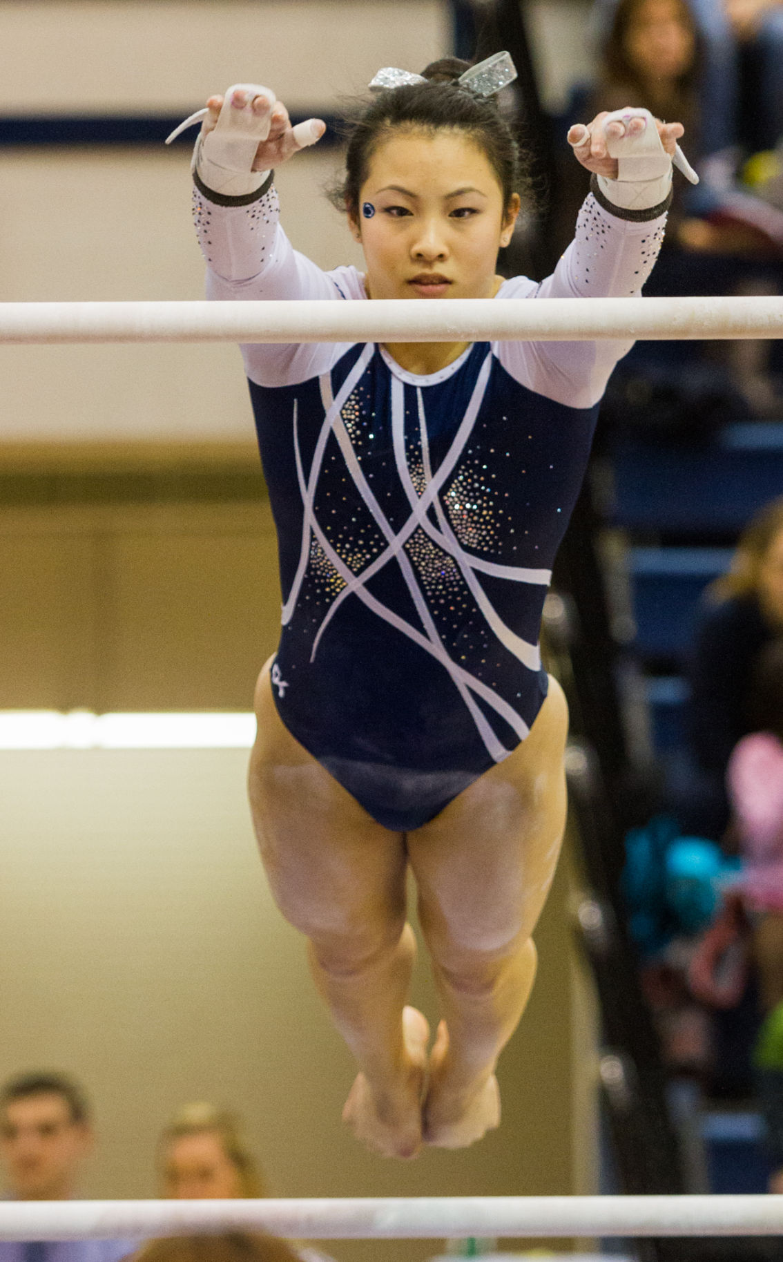 pa level 9 state gymnastics meet in michigan