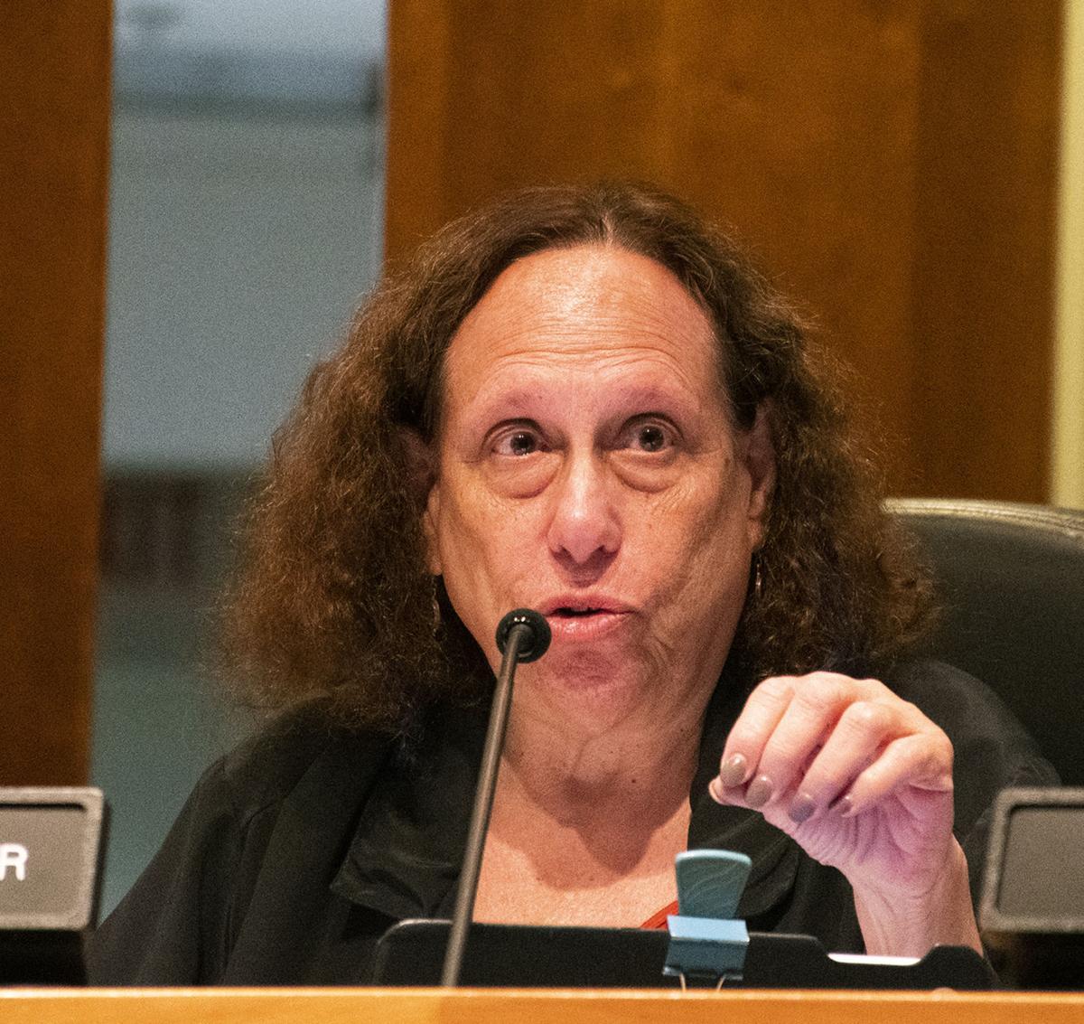 Borough Council Meeting, Theresa Lafer