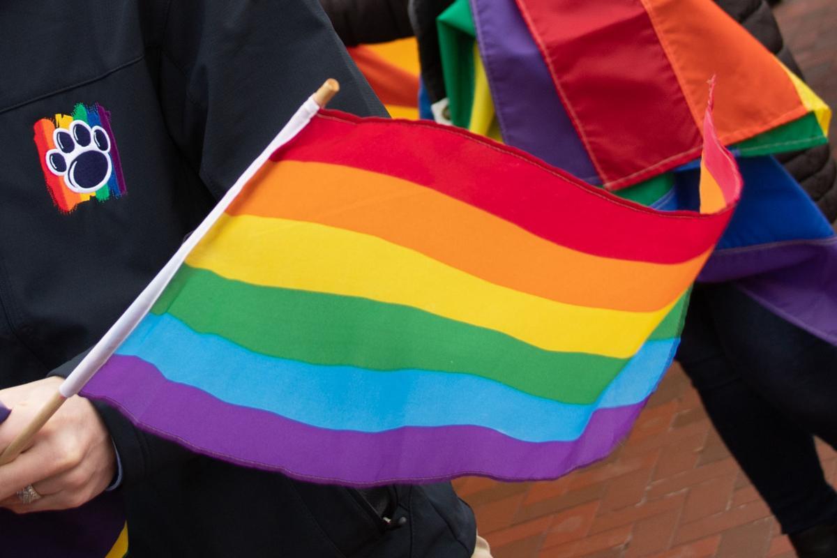 Pride Rally- Flag