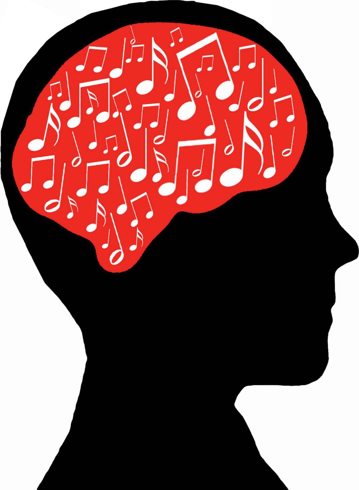 The musician's brain