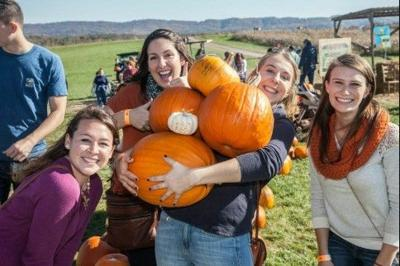 Harvest Hoedown at Sinkland Farms