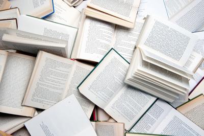 Non-profit Open Book brings children's books, equal