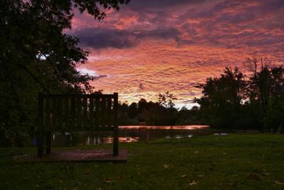 Duck Pond Sunset