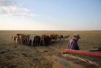 022721-news-drought-present0005.JPG