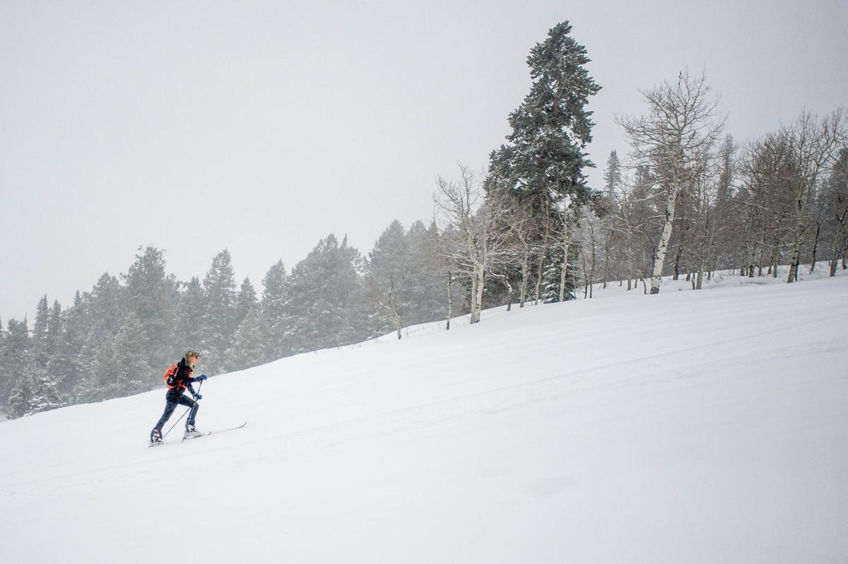 uphill skiing aspen