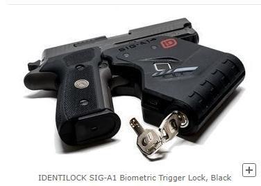 Biometric trigger lock