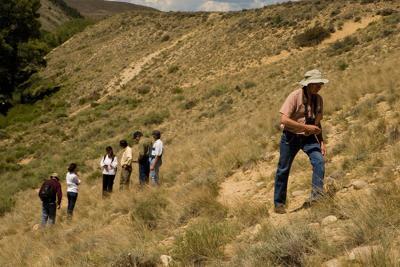 Colorado plant conservation