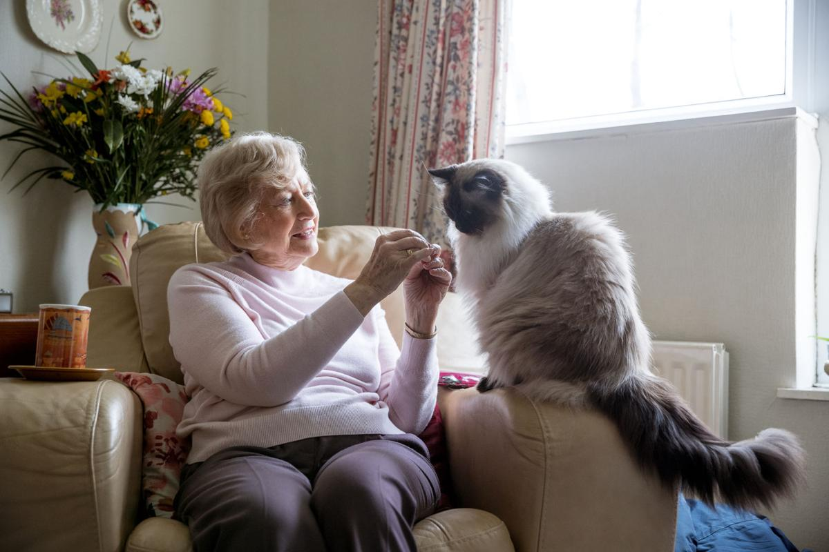 Senior Woman and her Pet Cat