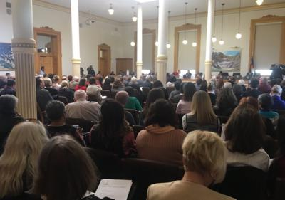 Hundreds crowd Capitol for hearing on sex ed changes
