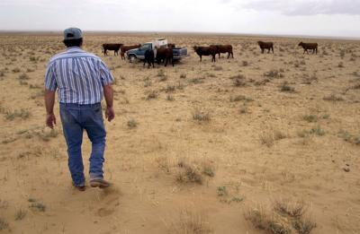 USDA declares 7 Colorado counties disaster areas because of drought