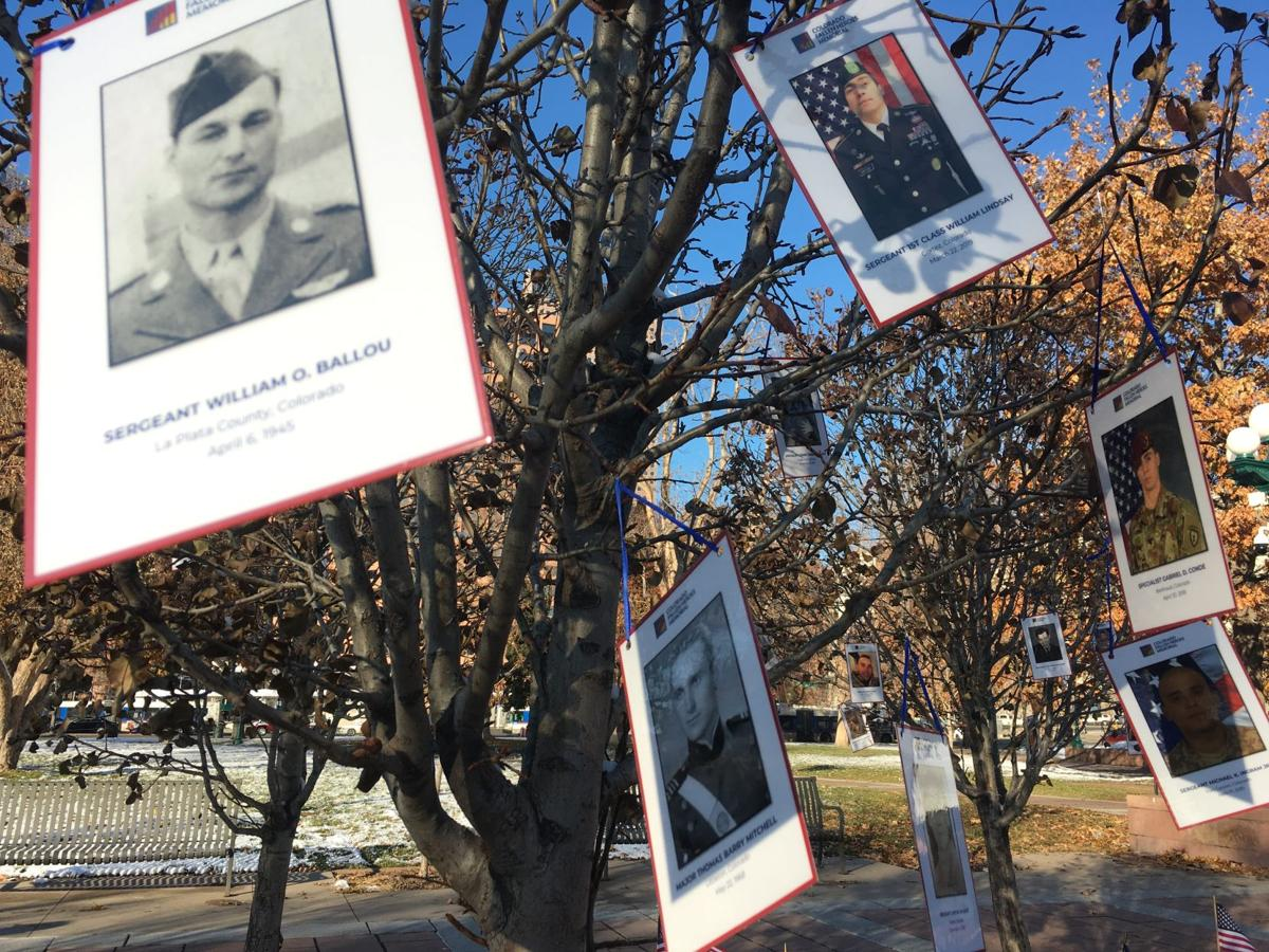 Soldiers' pictures at Lincoln Park on Veterans Day