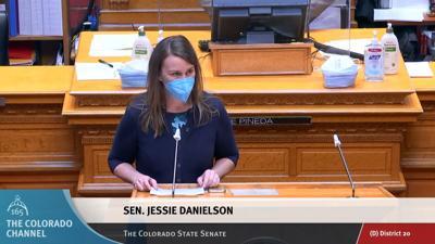 Sen. Jessie Danielson speaks to SB88