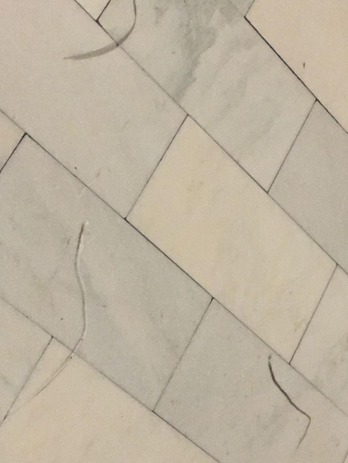 Tiles damaged in weekend vandalism at the state Capitol