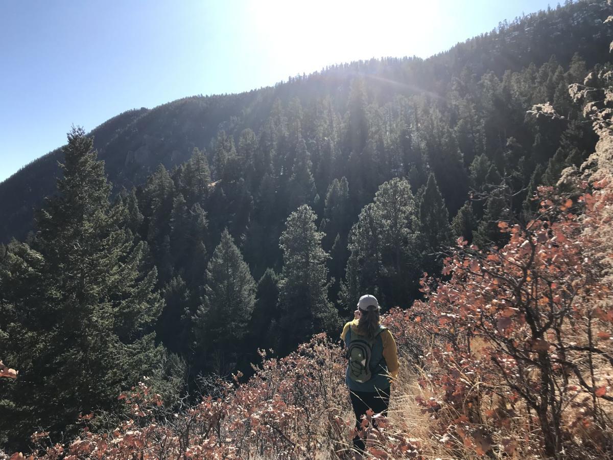 bratton trail 1.jpg