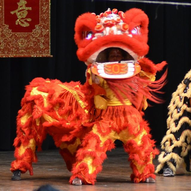 012419-go-msmd-chinese-new-year