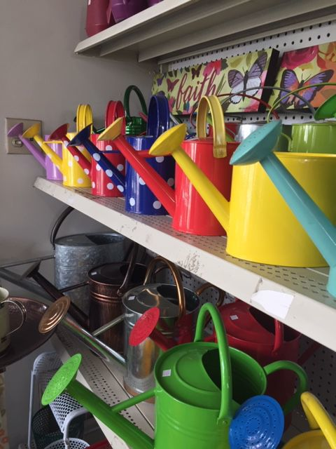 112418 hg spencers watering cans4.JPG
