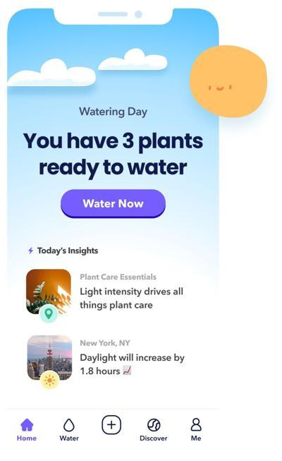 0705 plant.jpg