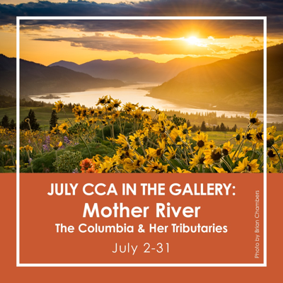 CCA call to artists