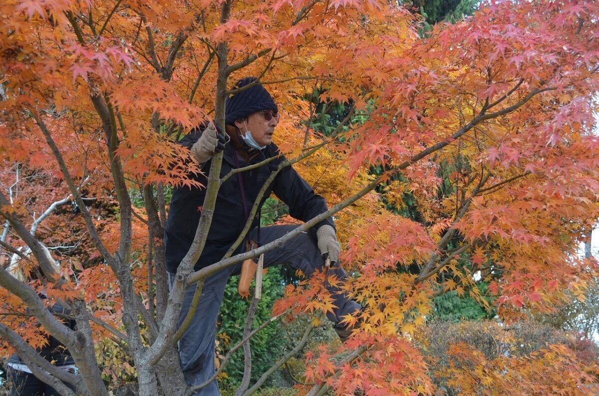 12-2 OR Master Gardeners PHOTO 2 (1).jpg