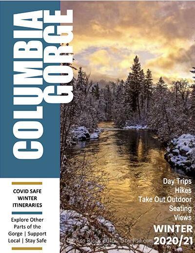 COVID winter trips