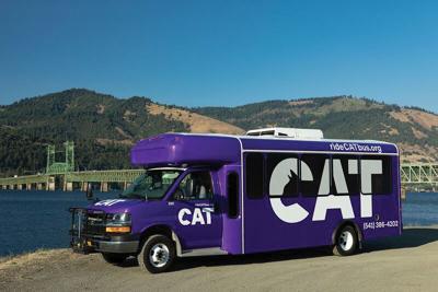 A1 CAT.jpg
