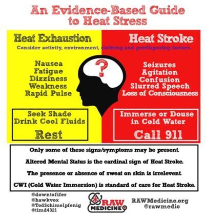 Heat exhaustion or Heat Stroke
