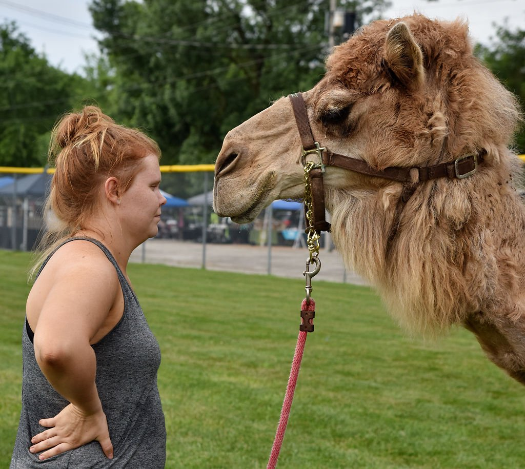 Emily Lantz stares face to face with Lucille, a 17-year-old camel, during Centralia's Fourth of July celebration