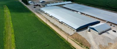 New CAFO law divides farmers over future of agriculture, environment in Missouri