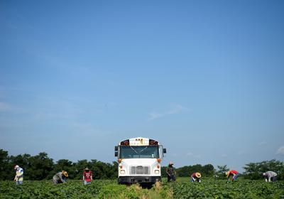 Missouri migrant workers face abuse, threats