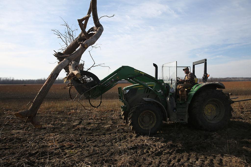 Robert Diederich clears driftwood