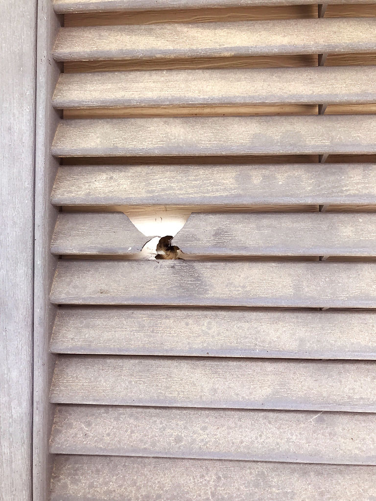 A bullet hole can be seen from a window shutter on Tuesday
