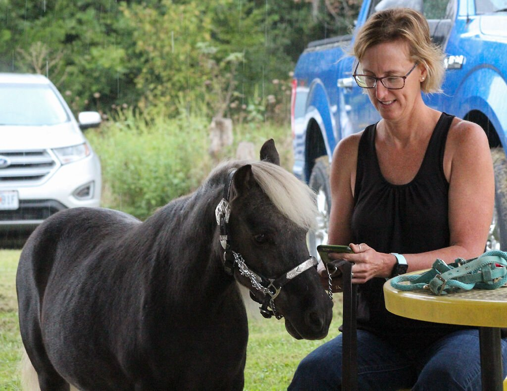 Susan Dudley waits with miniature horse Hollywood