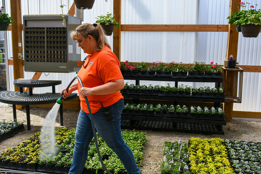 Local Plant Nurseries Adapt To Stay At