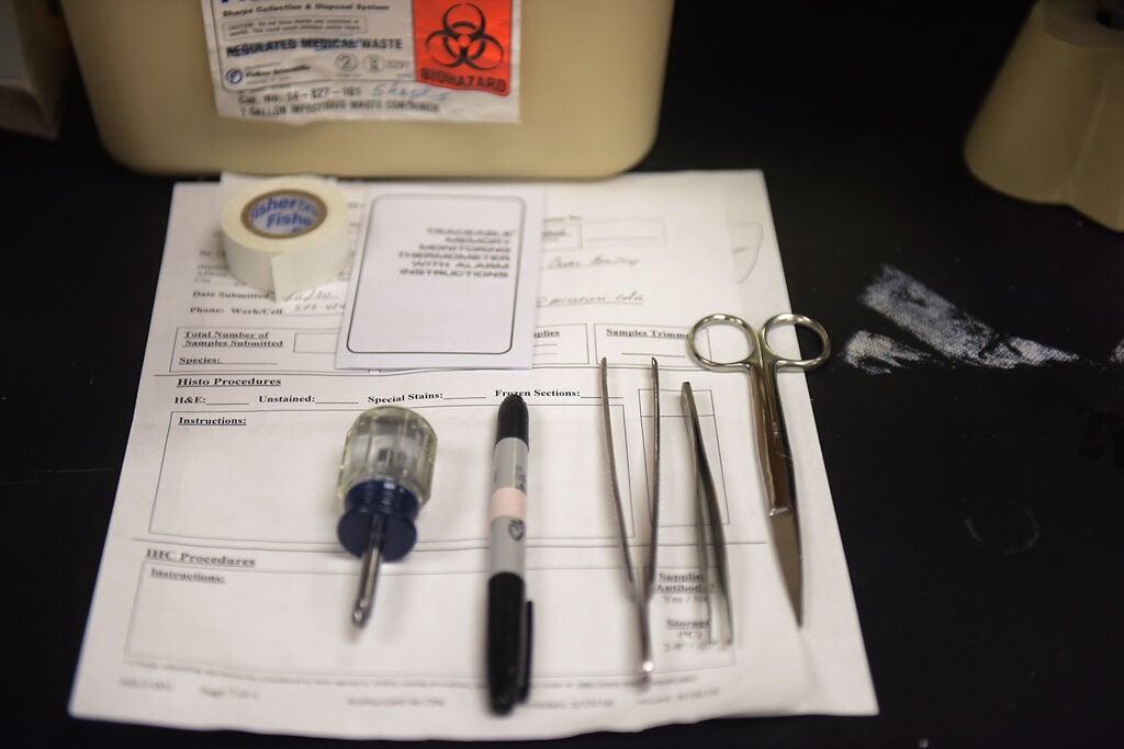 Tools sit in University of Missouri professor Frank Booth's lab