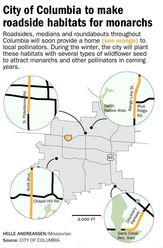 City of Columbia to make roadside habitats for monarchs