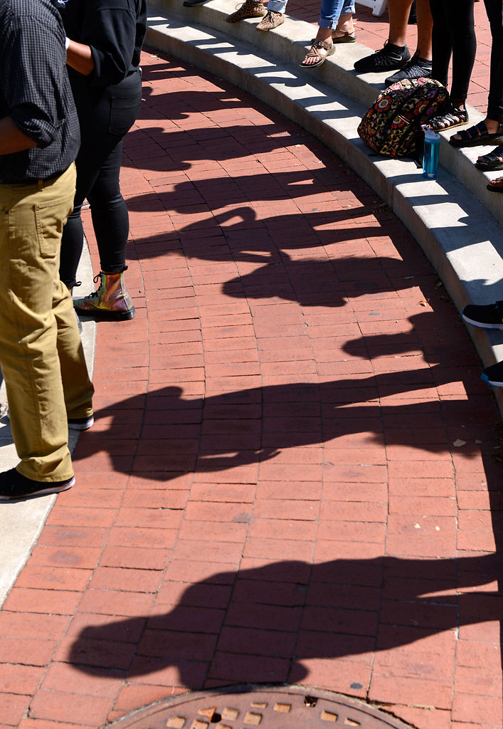 Shadows dot the bricks of Speaker's Circle